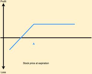 short put graph