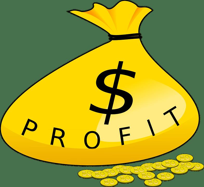 Profitability and Growth
