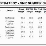Margin Strategy - Smr Number