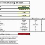 Foolish Small Cap 8 Screen